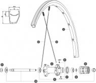 Mavic Ksyrium Elite S Ersatzspeiche Hinterrad links schwarz Nippel schwarz 301 mm Modell 2014-15
